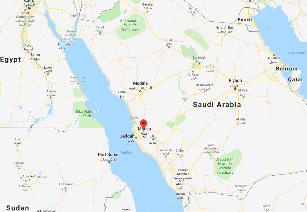 Britons among Saudi road crash dead